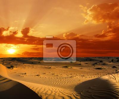 Постер Пейзаж песчаный Ландшафт пустыниПейзаж песчаный<br>Постер на холсте или бумаге. Любого нужного вам размера. В раме или без. Подвес в комплекте. Трехслойная надежная упаковка. Доставим в любую точку России. Вам осталось только повесить картину на стену!<br>