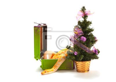 Постер Рептилии Змея с рождественской елкойРептилии<br>Постер на холсте или бумаге. Любого нужного вам размера. В раме или без. Подвес в комплекте. Трехслойная надежная упаковка. Доставим в любую точку России. Вам осталось только повесить картину на стену!<br>