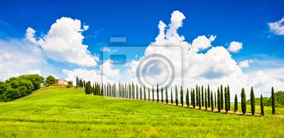 Постер Тоскана Красивый пейзаж с домом на холме в Тоскана, ИталияТоскана<br>Постер на холсте или бумаге. Любого нужного вам размера. В раме или без. Подвес в комплекте. Трехслойная надежная упаковка. Доставим в любую точку России. Вам осталось только повесить картину на стену!<br>