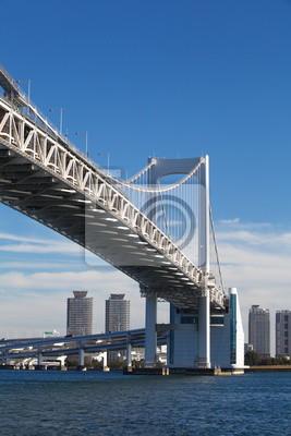 Постер Токио Радужный Мост от одаиба, Токио, ЯпонияТокио<br>Постер на холсте или бумаге. Любого нужного вам размера. В раме или без. Подвес в комплекте. Трехслойная надежная упаковка. Доставим в любую точку России. Вам осталось только повесить картину на стену!<br>