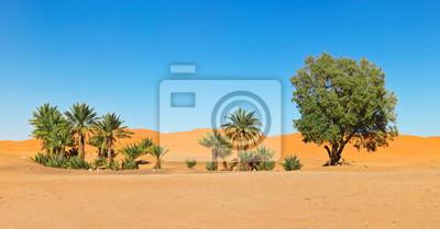Постер Африканский пейзаж Оазис в пустыне Сахара в МароккоАфриканский пейзаж<br>Постер на холсте или бумаге. Любого нужного вам размера. В раме или без. Подвес в комплекте. Трехслойная надежная упаковка. Доставим в любую точку России. Вам осталось только повесить картину на стену!<br>