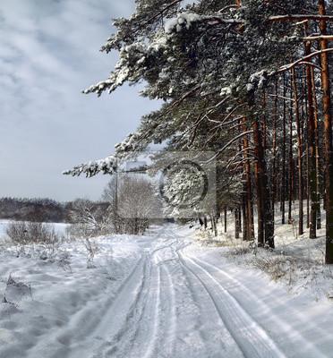 Постер Литва Зима в лесуЛитва<br>Постер на холсте или бумаге. Любого нужного вам размера. В раме или без. Подвес в комплекте. Трехслойная надежная упаковка. Доставим в любую точку России. Вам осталось только повесить картину на стену!<br>