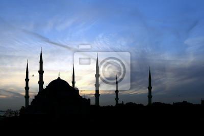 Постер Стамбул Голубая Мечеть, Стамбул, ТурцияСтамбул<br>Постер на холсте или бумаге. Любого нужного вам размера. В раме или без. Подвес в комплекте. Трехслойная надежная упаковка. Доставим в любую точку России. Вам осталось только повесить картину на стену!<br>