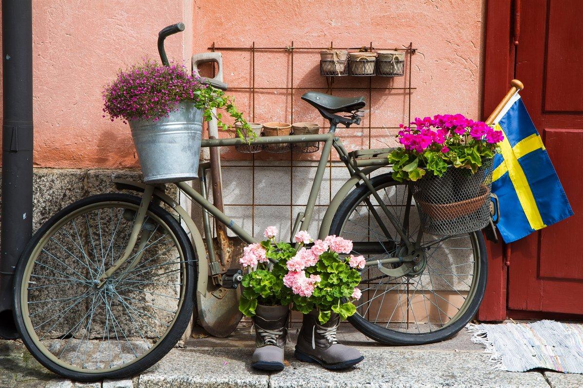 Цветок оформлены велосипеда в Стокгольме, 30x20 см, на бумагеСтокгольм<br>Постер на холсте или бумаге. Любого нужного вам размера. В раме или без. Подвес в комплекте. Трехслойная надежная упаковка. Доставим в любую точку России. Вам осталось только повесить картину на стену!<br>