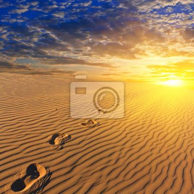 Постер Пейзаж песчаный Вечером песчаная пустыняПейзаж песчаный<br>Постер на холсте или бумаге. Любого нужного вам размера. В раме или без. Подвес в комплекте. Трехслойная надежная упаковка. Доставим в любую точку России. Вам осталось только повесить картину на стену!<br>