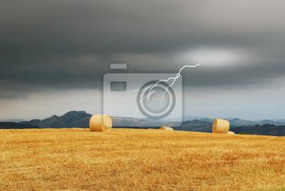 Постер Ураган, буря, торнадо Шторм и молнии в сельской местностиУраган, буря, торнадо<br>Постер на холсте или бумаге. Любого нужного вам размера. В раме или без. Подвес в комплекте. Трехслойная надежная упаковка. Доставим в любую точку России. Вам осталось только повесить картину на стену!<br>