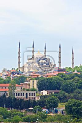 Постер Стамбул Голубая Мечеть в СтамбулеСтамбул<br>Постер на холсте или бумаге. Любого нужного вам размера. В раме или без. Подвес в комплекте. Трехслойная надежная упаковка. Доставим в любую точку России. Вам осталось только повесить картину на стену!<br>