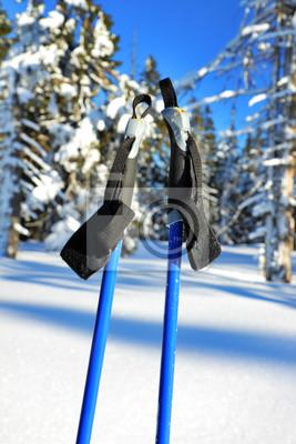 Постер Альпийский пейзаж Голубые лыжные палки с фоне зимнего лесаАльпийский пейзаж<br>Постер на холсте или бумаге. Любого нужного вам размера. В раме или без. Подвес в комплекте. Трехслойная надежная упаковка. Доставим в любую точку России. Вам осталось только повесить картину на стену!<br>