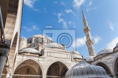 Постер Стамбул Sehzade Мехмед Камии. Мечеть в Стамбуле, ТурцияСтамбул<br>Постер на холсте или бумаге. Любого нужного вам размера. В раме или без. Подвес в комплекте. Трехслойная надежная упаковка. Доставим в любую точку России. Вам осталось только повесить картину на стену!<br>