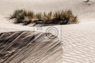 Постер Африканский пейзаж Песчаные дюны на закате в Сахаре в МароккоАфриканский пейзаж<br>Постер на холсте или бумаге. Любого нужного вам размера. В раме или без. Подвес в комплекте. Трехслойная надежная упаковка. Доставим в любую точку России. Вам осталось только повесить картину на стену!<br>