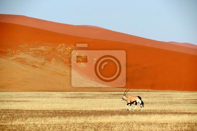 Постер Африканский пейзаж Пустыня КалахариАфриканский пейзаж<br>Постер на холсте или бумаге. Любого нужного вам размера. В раме или без. Подвес в комплекте. Трехслойная надежная упаковка. Доставим в любую точку России. Вам осталось только повесить картину на стену!<br>