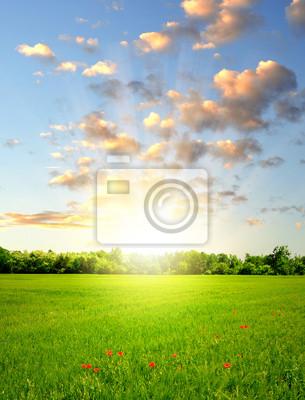 Постер Пейзаж равнинный Закат над весенний пейзажПейзаж равнинный<br>Постер на холсте или бумаге. Любого нужного вам размера. В раме или без. Подвес в комплекте. Трехслойная надежная упаковка. Доставим в любую точку России. Вам осталось только повесить картину на стену!<br>