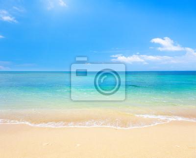 Постер Пейзаж морской Пляж и море, тропическийПейзаж морской<br>Постер на холсте или бумаге. Любого нужного вам размера. В раме или без. Подвес в комплекте. Трехслойная надежная упаковка. Доставим в любую точку России. Вам осталось только повесить картину на стену!<br>