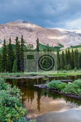 Постер Канада Горные пейзажи с небольшой пруд в Национальный парк БанфКанада<br>Постер на холсте или бумаге. Любого нужного вам размера. В раме или без. Подвес в комплекте. Трехслойная надежная упаковка. Доставим в любую точку России. Вам осталось только повесить картину на стену!<br>