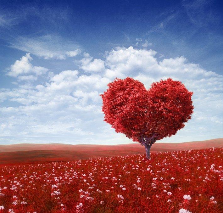 Дерево в форме сердца, день Святого Валентина,фоновая, 21x20 см, на бумаге02.14 День Святого Валентина (День всех влюбленных)<br>Постер на холсте или бумаге. Любого нужного вам размера. В раме или без. Подвес в комплекте. Трехслойная надежная упаковка. Доставим в любую точку России. Вам осталось только повесить картину на стену!<br>