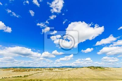 Постер Италия Тосканский пейзаж. Антенна панорама на поля и деревья, Италия, EИталия<br>Постер на холсте или бумаге. Любого нужного вам размера. В раме или без. Подвес в комплекте. Трехслойная надежная упаковка. Доставим в любую точку России. Вам осталось только повесить картину на стену!<br>