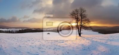 Постер Зима Зимний пейзаж со снегом и только дерево - панорамаЗима<br>Постер на холсте или бумаге. Любого нужного вам размера. В раме или без. Подвес в комплекте. Трехслойная надежная упаковка. Доставим в любую точку России. Вам осталось только повесить картину на стену!<br>
