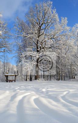 Зимний лес в крещенские морозы., 20x31 см, на бумагеБеларусь<br>Постер на холсте или бумаге. Любого нужного вам размера. В раме или без. Подвес в комплекте. Трехслойная надежная упаковка. Доставим в любую точку России. Вам осталось только повесить картину на стену!<br>
