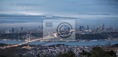 Постер Турция Босфор и мост ночью, СтамбулТурция<br>Постер на холсте или бумаге. Любого нужного вам размера. В раме или без. Подвес в комплекте. Трехслойная надежная упаковка. Доставим в любую точку России. Вам осталось только повесить картину на стену!<br>