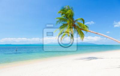 Постер Лето Красивый пляж с кокосовой пальмы и мореЛето<br>Постер на холсте или бумаге. Любого нужного вам размера. В раме или без. Подвес в комплекте. Трехслойная надежная упаковка. Доставим в любую точку России. Вам осталось только повесить картину на стену!<br>