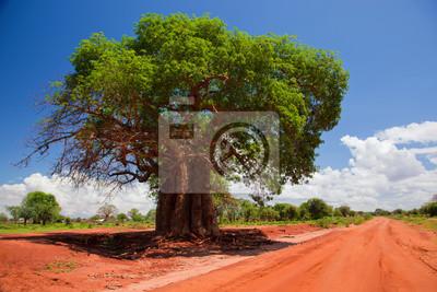 Постер Африканский пейзаж Баобаб, Кения, АфрикаАфриканский пейзаж<br>Постер на холсте или бумаге. Любого нужного вам размера. В раме или без. Подвес в комплекте. Трехслойная надежная упаковка. Доставим в любую точку России. Вам осталось только повесить картину на стену!<br>