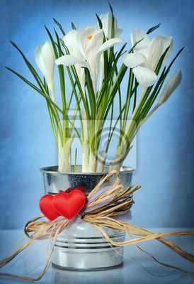 Белые крокусы, 20x29 см, на бумаге02.14 День Святого Валентина (День всех влюбленных)<br>Постер на холсте или бумаге. Любого нужного вам размера. В раме или без. Подвес в комплекте. Трехслойная надежная упаковка. Доставим в любую точку России. Вам осталось только повесить картину на стену!<br>