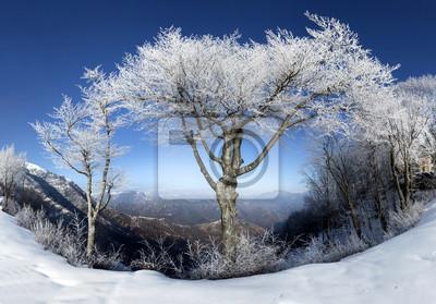 Постер Альпийский пейзаж Горы с заснеженнымиАльпийский пейзаж<br>Постер на холсте или бумаге. Любого нужного вам размера. В раме или без. Подвес в комплекте. Трехслойная надежная упаковка. Доставим в любую точку России. Вам осталось только повесить картину на стену!<br>
