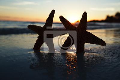 Морская звезда морская звезда Силуэт на sunrise beach, мелкие dof, 30x20 см, на бумагеМорские звезды<br>Постер на холсте или бумаге. Любого нужного вам размера. В раме или без. Подвес в комплекте. Трехслойная надежная упаковка. Доставим в любую точку России. Вам осталось только повесить картину на стену!<br>