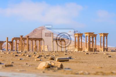 Постер Сирия Древние римские города в Пальмире, Сирия.Сирия<br>Постер на холсте или бумаге. Любого нужного вам размера. В раме или без. Подвес в комплекте. Трехслойная надежная упаковка. Доставим в любую точку России. Вам осталось только повесить картину на стену!<br>