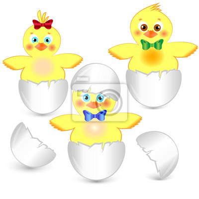 Постер Дизайнерские обои для детской Три маленькие куриные в скорлупе яйцаДизайнерские обои для детской<br>Постер на холсте или бумаге. Любого нужного вам размера. В раме или без. Подвес в комплекте. Трехслойная надежная упаковка. Доставим в любую точку России. Вам осталось только повесить картину на стену!<br>