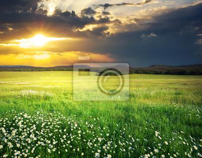 Постер Пейзаж равнинный Зеленый луг, в горы.Пейзаж равнинный<br>Постер на холсте или бумаге. Любого нужного вам размера. В раме или без. Подвес в комплекте. Трехслойная надежная упаковка. Доставим в любую точку России. Вам осталось только повесить картину на стену!<br>