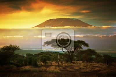 Постер Пейзаж горный Гора Килиманджаро. Savanna в Амбосели, КенияПейзаж горный<br>Постер на холсте или бумаге. Любого нужного вам размера. В раме или без. Подвес в комплекте. Трехслойная надежная упаковка. Доставим в любую точку России. Вам осталось только повесить картину на стену!<br>