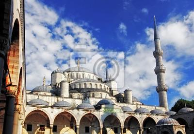 Постер Турция Голубая мечеть в Стамбуле, ТурцияТурция<br>Постер на холсте или бумаге. Любого нужного вам размера. В раме или без. Подвес в комплекте. Трехслойная надежная упаковка. Доставим в любую точку России. Вам осталось только повесить картину на стену!<br>