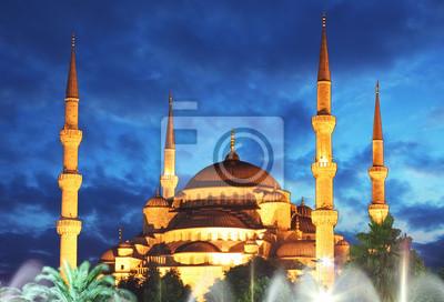 Постер Турция Голубая Мечеть ночью в Стамбуле - ТурцияТурция<br>Постер на холсте или бумаге. Любого нужного вам размера. В раме или без. Подвес в комплекте. Трехслойная надежная упаковка. Доставим в любую точку России. Вам осталось только повесить картину на стену!<br>
