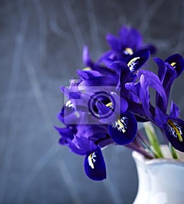 Весна ирис  цветы в вазе, 20x22 см, на бумагеИрисы<br>Постер на холсте или бумаге. Любого нужного вам размера. В раме или без. Подвес в комплекте. Трехслойная надежная упаковка. Доставим в любую точку России. Вам осталось только повесить картину на стену!<br>