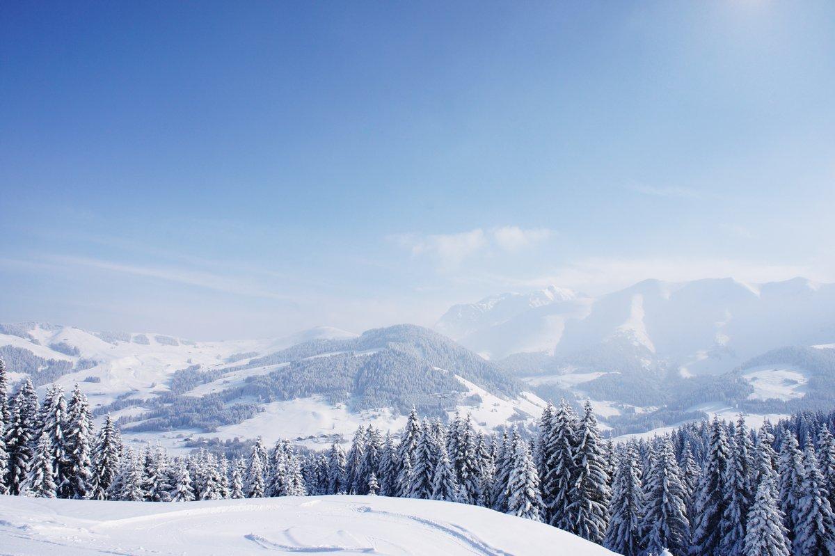 Постер Альпийский пейзаж Гора с деревьевАльпийский пейзаж<br>Постер на холсте или бумаге. Любого нужного вам размера. В раме или без. Подвес в комплекте. Трехслойная надежная упаковка. Доставим в любую точку России. Вам осталось только повесить картину на стену!<br>