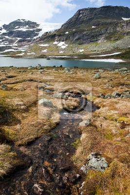 Постер Норвегия Hardangervidda , НорвегияНорвегия<br>Постер на холсте или бумаге. Любого нужного вам размера. В раме или без. Подвес в комплекте. Трехслойная надежная упаковка. Доставим в любую точку России. Вам осталось только повесить картину на стену!<br>