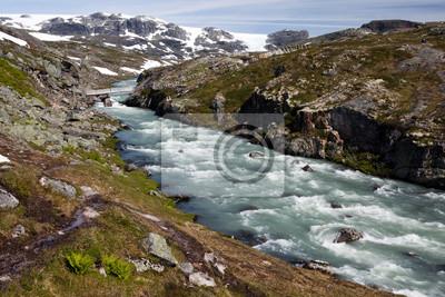 Постер Норвегия Hardangervidda, НорвегияНорвегия<br>Постер на холсте или бумаге. Любого нужного вам размера. В раме или без. Подвес в комплекте. Трехслойная надежная упаковка. Доставим в любую точку России. Вам осталось только повесить картину на стену!<br>
