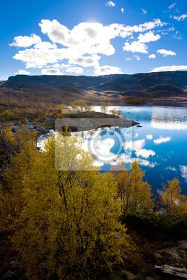 Постер Норвегия Пейзаж Южной Vestlandet, НорвегияНорвегия<br>Постер на холсте или бумаге. Любого нужного вам размера. В раме или без. Подвес в комплекте. Трехслойная надежная упаковка. Доставим в любую точку России. Вам осталось только повесить картину на стену!<br>