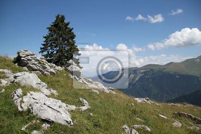 Постер Альпийский пейзаж МонтаньАльпийский пейзаж<br>Постер на холсте или бумаге. Любого нужного вам размера. В раме или без. Подвес в комплекте. Трехслойная надежная упаковка. Доставим в любую точку России. Вам осталось только повесить картину на стену!<br>