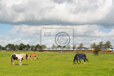 Постер Нидерланды Пейзаж с лошадьми и поездНидерланды<br>Постер на холсте или бумаге. Любого нужного вам размера. В раме или без. Подвес в комплекте. Трехслойная надежная упаковка. Доставим в любую точку России. Вам осталось только повесить картину на стену!<br>