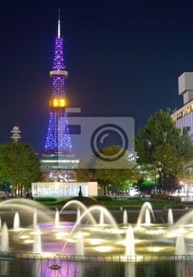 Постер Япония Саппоро, Япония городской Пейзаж в парке ОдориЯпония<br>Постер на холсте или бумаге. Любого нужного вам размера. В раме или без. Подвес в комплекте. Трехслойная надежная упаковка. Доставим в любую точку России. Вам осталось только повесить картину на стену!<br>