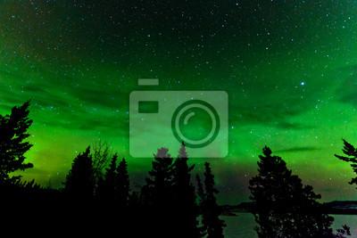 Постер Канада Зеленый свет Северного сияния или Aurora borealisКанада<br>Постер на холсте или бумаге. Любого нужного вам размера. В раме или без. Подвес в комплекте. Трехслойная надежная упаковка. Доставим в любую точку России. Вам осталось только повесить картину на стену!<br>