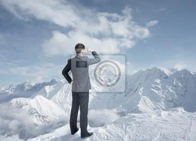 Постер Пейзаж горный Бизнесмен смотрит в зимних горахПейзаж горный<br>Постер на холсте или бумаге. Любого нужного вам размера. В раме или без. Подвес в комплекте. Трехслойная надежная упаковка. Доставим в любую точку России. Вам осталось только повесить картину на стену!<br>