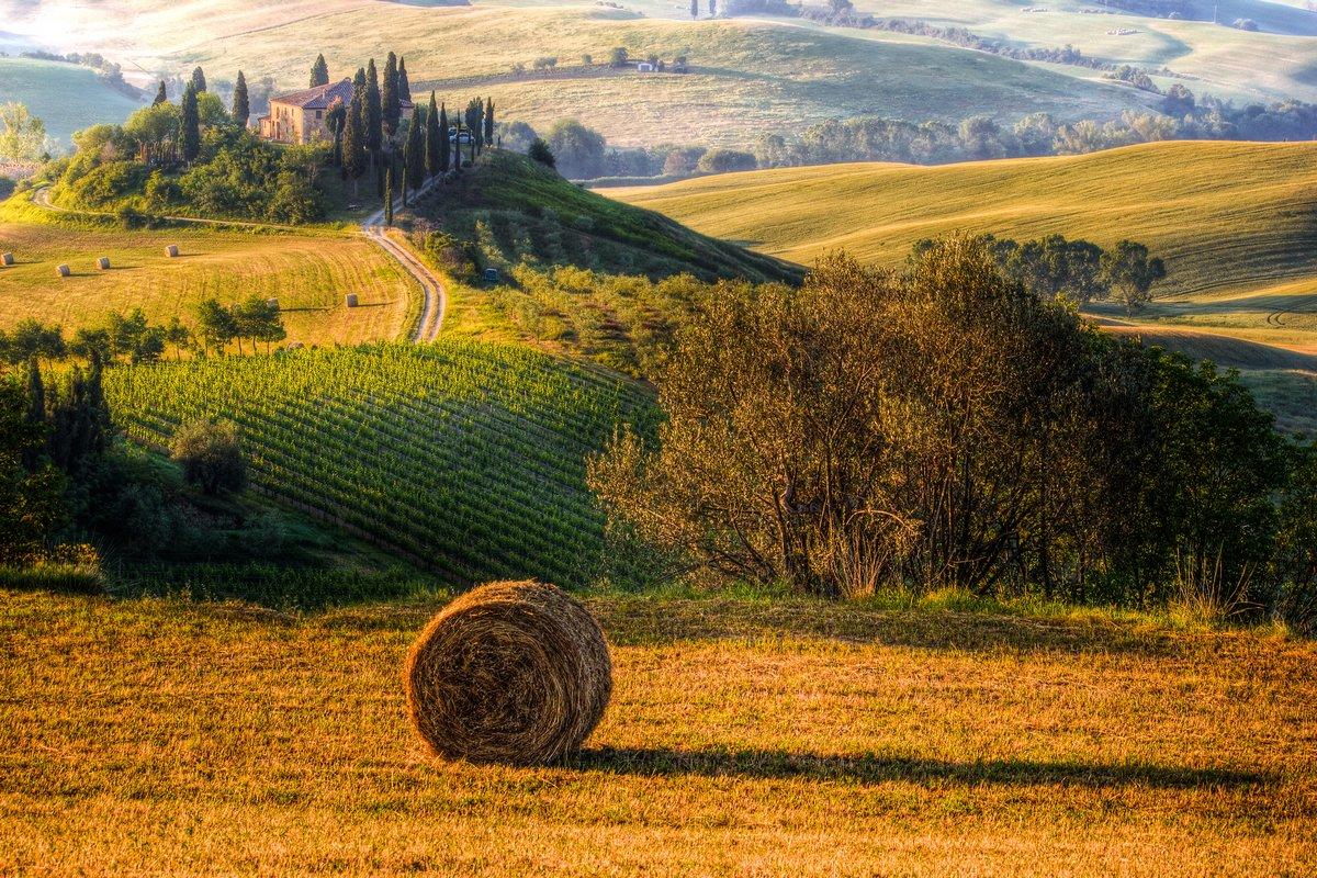 Постер Италия Toscana, podere e paesaggioИталия<br>Постер на холсте или бумаге. Любого нужного вам размера. В раме или без. Подвес в комплекте. Трехслойная надежная упаковка. Доставим в любую точку России. Вам осталось только повесить картину на стену!<br>