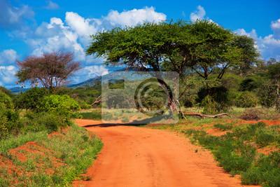 Постер Кения Красный молотый дороги, Буш с саванны. Цаво Запад, Кения, АфрикаКения<br>Постер на холсте или бумаге. Любого нужного вам размера. В раме или без. Подвес в комплекте. Трехслойная надежная упаковка. Доставим в любую точку России. Вам осталось только повесить картину на стену!<br>