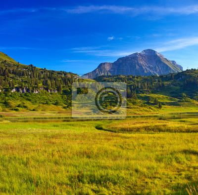 Постер Альпийский пейзаж Альп пейзажАльпийский пейзаж<br>Постер на холсте или бумаге. Любого нужного вам размера. В раме или без. Подвес в комплекте. Трехслойная надежная упаковка. Доставим в любую точку России. Вам осталось только повесить картину на стену!<br>