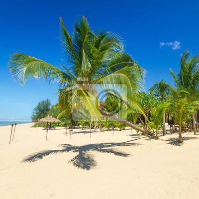 Постер Таиланд Красивый тропический пляж с кокосовой пальмой в ТаиландеТаиланд<br>Постер на холсте или бумаге. Любого нужного вам размера. В раме или без. Подвес в комплекте. Трехслойная надежная упаковка. Доставим в любую точку России. Вам осталось только повесить картину на стену!<br>