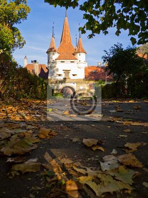 Постер Румыния Екатерина ворота, БрашовРумыния<br>Постер на холсте или бумаге. Любого нужного вам размера. В раме или без. Подвес в комплекте. Трехслойная надежная упаковка. Доставим в любую точку России. Вам осталось только повесить картину на стену!<br>