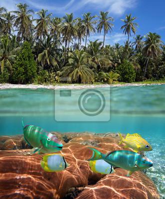 Постер Пейзаж морской Тропический пляж и коралловый рифПейзаж морской<br>Постер на холсте или бумаге. Любого нужного вам размера. В раме или без. Подвес в комплекте. Трехслойная надежная упаковка. Доставим в любую точку России. Вам осталось только повесить картину на стену!<br>